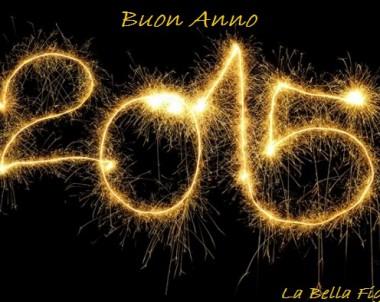 Buon Anno 2015 !!!