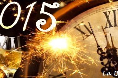 Šťastný Nový Rok 2015 !!!